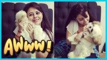 Look What's Keeping Devoleena Bhattacharjee aka Gopi Bahu Busy | TellyMasala