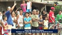 Kaso ng Bird Flu Virus, naitala sa Jaen at San Isidro sa Nueva Ecija