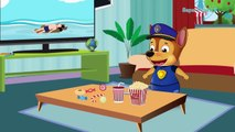 Paw Patrol Chase DEAD By Cross The Street On a Red Light| Pups save Chase| Super Pups TV