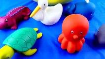 Animaux bébés Bol enfant couleur les couleurs poisson amusement amusement enfants Apprendre apprentissage Mer enseigner tout petit jouets