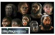 Les Origines De L'homme. 01 L'Evolution De Nos Gènes.