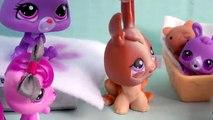 Bébé hôpital maman film garderie partie animal de compagnie séries Boutique vidéo Lps mamans 41 littlest lps b