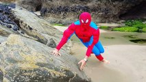 Playing on the Beach with Baby Doll / Spiderman Water and Sand I found a baby! - Water Col