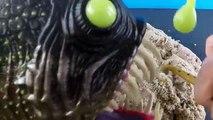 Лучший видео акула Игрушки Справка открыть сюрприз акула Игрушки Справка открыть сюрприз