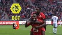 But Firmin MUBELE (46ème) / Stade Rennais FC - Dijon FCO - (2-2) - (SRFC-DFCO) / 2017-18