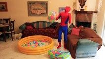 Un et un à un un à balle lit construit pour géant vie rose fosse réal Fille de laraignée homme araignée super-héros orbeetz