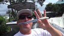 Un et un à un un à et lame nettoyer filet pêche Floride Comment en mer à Il sériole Snapper ft Bubba
