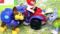 PAW PATROL Nickelodeon Paw Patrol Chase Captured a Paw
