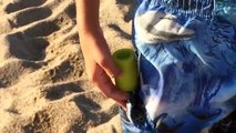 Ретроспекция Игры Ла Ля в в Ле наливать сюр лебедь пляж открывает первую волну