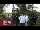 Hallan nueve cuerpos en fosas clandestinas de Veracruz / Titulares de la noche