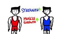 Poids contre poids levage voir Plus vite résultats