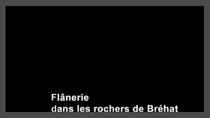 BrehatRochers480