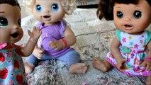 Vivant bébé a sa animal de compagnie Boutique volé a pris jouets qui Molly mollys littlest