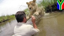 Kevin Richardson: GoPro captures lion whisperer convincing lioness to take leap of faith