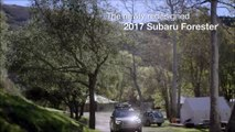 2017 Subaru Forester Fort Lauderdale FL | Subaru Dealership Fort Lauderdale FL