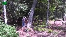 Tree cutting fails and idiots with chainsaws. EPIC COMPILATION: part 5