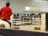 Salon du cheval de montpellier 07- cso b1 (135cm)