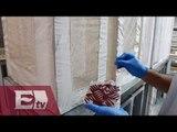 Un caso de zika en Brasil por transfusión de sangre/ Paola Virrueta