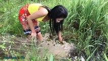 Terrifying!!Amazing Girl Catch Extremely Big Snake While Go Fishing With Net Fish Trap