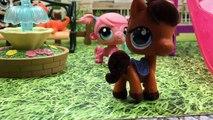 Azra ve Zümranın Maceraları 4.Bölüm - Minişler Cupcake Tv - Littlest Pet Shop -LPS Minişler Türkç
