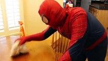 Drôle dans vie femme de ménage sur farce réal homme araignée super-héros toilette brosse à dents Catwoman irl 2