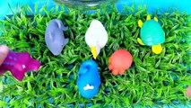 Animaux enfants éducatif amusement amusement enfants Apprendre apprentissage des noms océan Mer eau Animal orbeez t