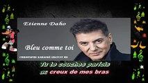 Etienne Daho - Bleu comme toi KARAOKE / INSTRUMENTAL