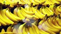 Un et un à un un à bananes corps journée manger pour arrive Si est est est mois par Ceci à Il Quelle ce qui vous vous vous votre