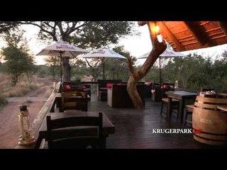 Ezulwini  Game Lodges - Südafrika