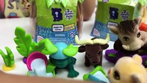 Et des œufs grenouille géant petit vivre animaux domestiques réal jouet jouets tortue eau Surprise surprise lil lil