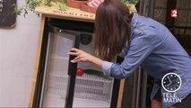 Actions solidaires - Le frigo solidaire
