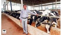 Laitier Agriculture prêt prêts laitiers