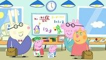 Peppa Pig Cochon - Les petites bêtes - Le bureau de papa Pig - L'anniversaire de George - George attrape un rhume