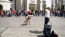 Cette mamie danse comme une folle sur de la musique Beatbox dans les rues de Bruxelles !