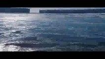 [CDA] Marsz pingwinów 2: Przygoda na krańcu świata ONLINE (2017) [PO POLSKU] Cały Film [w siecii]