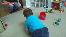 Bébés bébé vient papa père content domicile maison Quand compilation de reion p 3