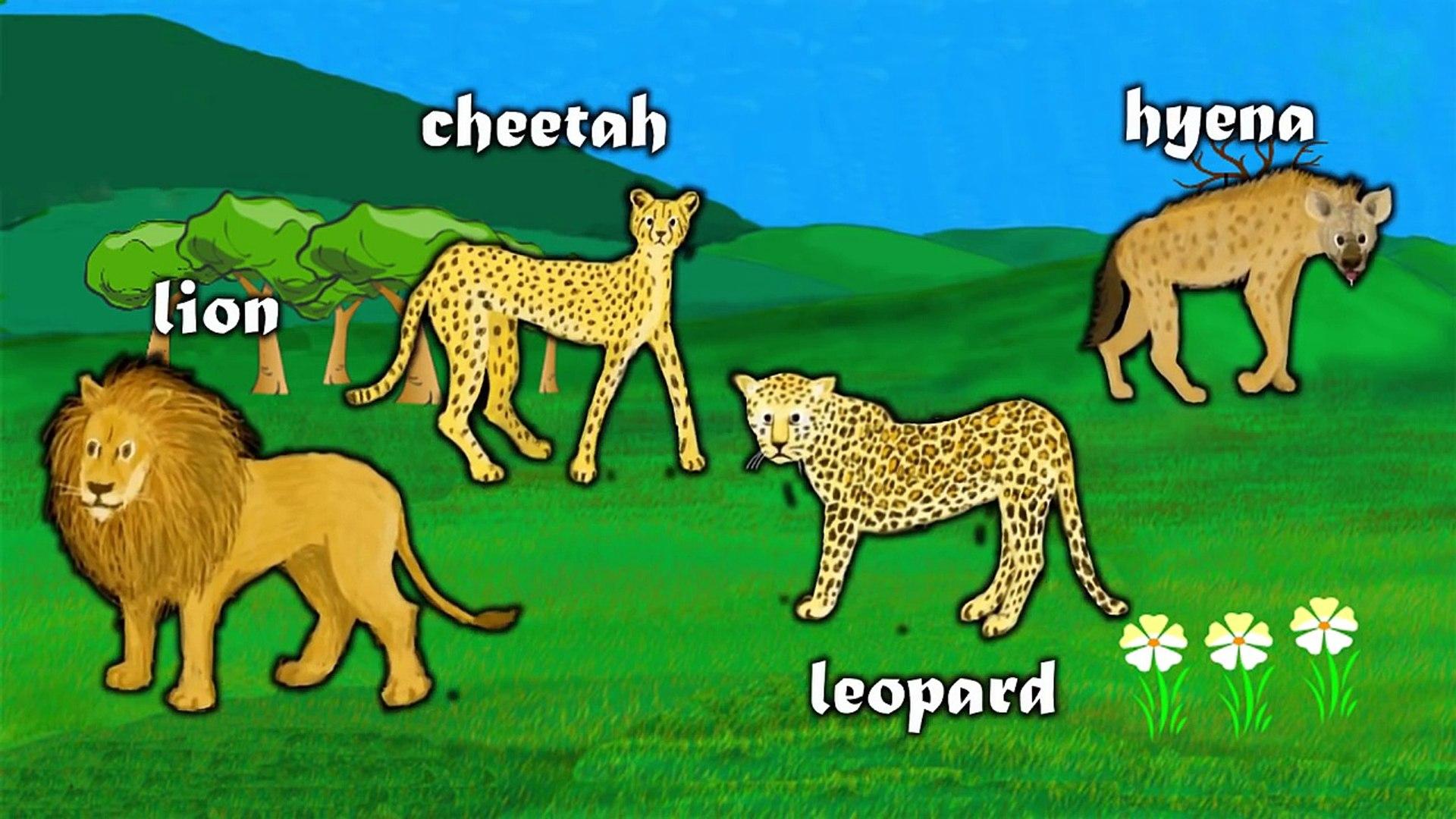 AFRICAN ANIMALS   Animals playlist for children. Kids videos. Kindergarten   Preschool lea