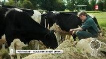 """""""Petit paysan"""" ou un amour (trop) grand pour l'élevage"""