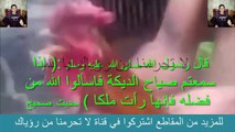 حقيقة وليس خيال , ديك يتكلم بلسان عربي , اسمع ماذا قال يا سبحان الله
