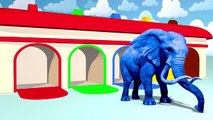 Animaux enfants les couleurs la famille doigt pour enfants Apprendre apprentissage garderie rimes les tout-petits |
