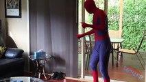 Et noir homme de fer mouvement panthère partie homme araignée arrêter supérieur superieur vidéo avec Action 5