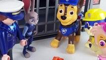 Amour chasse et et Portugais patrouille canine Skye grande histoire damour patte épisode c