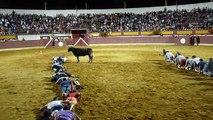 Course à 4 pattes au milieu d'une corrida et d'un taureau fou !