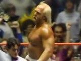 HULK HOGAN VS RANDY THE MACHO MAN SAVAGE - THEIR FIRST MATCH - WWE WWF Wrestling - Sports MMA Mixed Martial Arts Entertainment