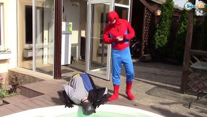 Pink Spidergirl loses her legs! w/ Frozen Elsa, Blue Spiderman, Joker girl, bad baby joker baby