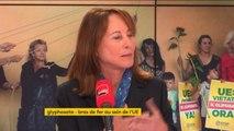 """""""Il ne faut pas que la France vote l'autorisation du Glyphosate"""", dit Ségolène Royal"""