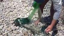 Jeter fr dans pêche pêche Menidia mer net net
