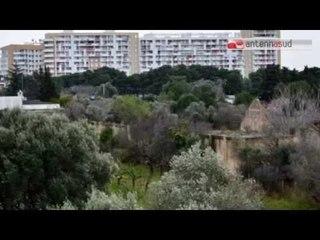 TG 12.03.15 Bari: amianto tombato, forse l'area è più estesa di quanto si credeva
