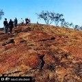 Fraser Island Tours | Fraser Island Activities Australia | Fraser Island 3 Day Tour