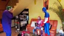Graisse homme araignée bataille pour perdant poids contre Araign? e fille drôle vidéo